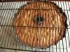 cherry-limeade-cake-3189