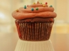 chocolate-peppermint-cupcakes-4509